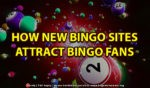 How New Bingo Sites Attract Bingo Fans